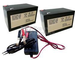 Kit baterías Litio para 24 voltios 15 Amperios Litio y Cargador 24V