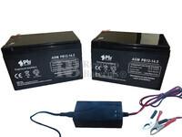 Kit baterías 24 Voltios 14,5 Amperios PB12-14.5 y Cargador 24V