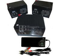 Kit baterías 36 Voltios 14,5 Amperios PB12-14.5 y Cargador 36V