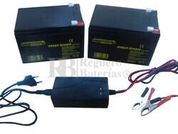 Kit 24 Voltios 14 Amperios MVDZM12140 y Cargador 24V