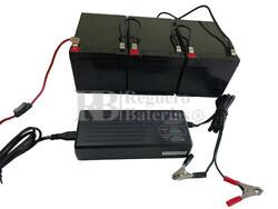Kit baterías 36 Voltios 12 Amperios con Conexiones y Cargador 36V