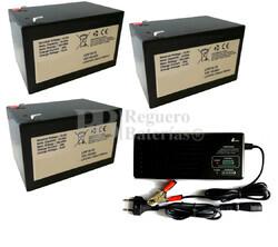 Kit baterías para movilidad 36 Voltios 15 Amperios Litio y Cargador 36V