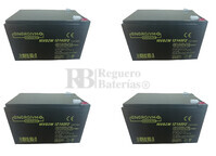 Baterías Patinete Raycool Brushless 48 Voltios 14 Amperios