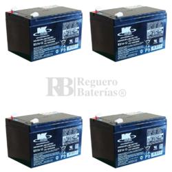 Kit baterías MK para Patines 48 Voltios 14 Amperios