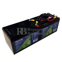 kit baterías Patín 24 Voltios 14 Amperios con Cables