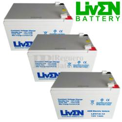 Kit baterías Patín 36 Voltios 14 Amperios LEV14-12