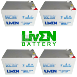 Kit baterías Patín Roan 48V 14A