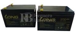 Kit baterías 24 Voltios 12 Amperios WP12-12 para Vehículos Eléctricos