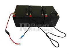 Kit baterías 36 Voltios 14,5 Amperios para Vehículos Eléctricos con Conexiones