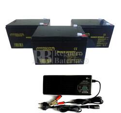 Kit baterías 36 Voltios 14 Amperios y Cargador 36V