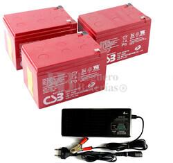 Baterías 36 Voltios 15 Amperios y Cargador
