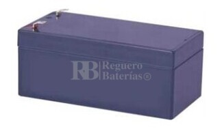 Batería AGM para Grúa Hospitalaria 12 Voltios 3,3 Amperios U-POWER NP3.3-12