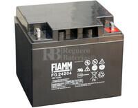 Batería AGM Cíclica para Silla de Ruedas Eléctrica en 12 Voltios 42 Amperios FG24204