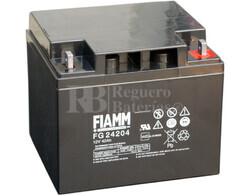Bateria AGM C�clica para Silla de Ruedas El�ctrica en 12 Voltios 42 Amperios FIAMM FG24204