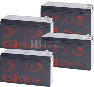 Baterías de sustitución para SAI APC SU1400R2BX120 - APC RBC24
