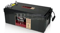 Batería Monoblock para instalacion solar  Plomo abierto 12 Voltios 230 Amperios C20 Trojan 8D-AGM