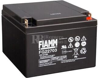 Batería Carrito de Golf 12 voltios 27 amperios FIAMM FG22703
