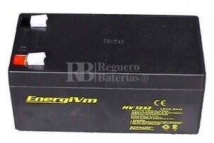 Batería AGM para Grúa Hospitalaria 12 Voltios 3,2 Amperios Energivm MV1232