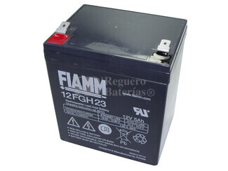 Batería para Alarma de 12 Voltios 5 Amperios FIAMM 12FGH23
