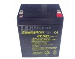 Bateria para Alarma de 12 Voltios 2,9 Amperios