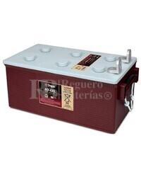 Batería Monoblock para instalacion solar en GEL 12 Voltios 225 Amperios C20 Trojan 8D-GEL