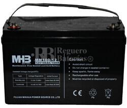 Bateria para caravana 12 voltios 100 amperios Gel Conexión Tornillo