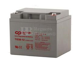 Bater�a de Gel para Silla de Ruedas El�ctrica en 12 Voltios 42,2 Amperios TG38-12