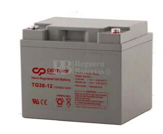 Batería de Gel para Silla de Ruedas Eléctrica en 12 Voltios 42,2 Amperios TG38-12