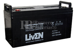 Bateria para caravana 12 voltios 120 amperios en GEL Conexión  Tornillo