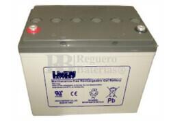 Bateria para caravana 12 voltios 85 amperios en GEL Conexión Tornillo