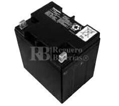 Bateria Panasonic LC-X1224PG/APG 12 Voltios 24 Amperios 165x125x175mm
