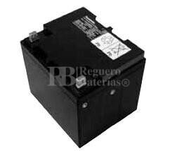 Bateria Panasonic LC-X1238PG-APG 12 Voltios 38 Amperios 197x165x175mm