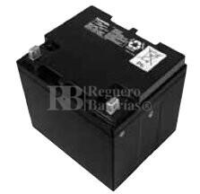 Bateria Panasonic LC-X1242P-AP 12 Voltios 42 Amperios 197x165x175mm