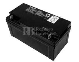 Bateria Panasonic LC-X1265PG 12 Voltios 65 Amperios 350x166x175mm
