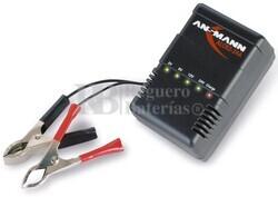 Cargador Automatico de Baterias de Plomo de 2, 6, 12 y 24 Voltios
