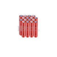 Packs de baterías AAA 24 Voltios 800 mAh NI-MH RB90033879