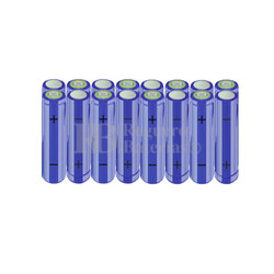 Packs de baterías AA 19.2 Voltios 2.000 mAh NI-MH RB90033535