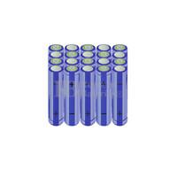 Packs de baterías AA 24 Voltios 2.000 mAh NI-MH RB90033478