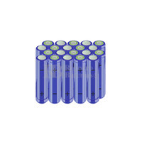 Packs de baterías AA 24 Voltios 2.000 mAh NI-MH  RB90033526